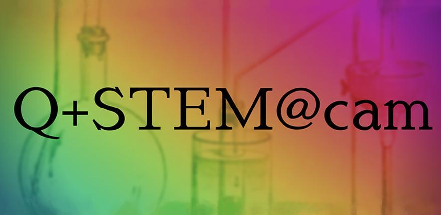 QSTEM network logo